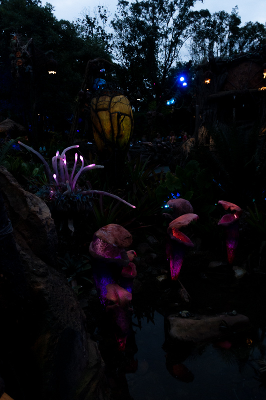 Pandora Fauna At Night